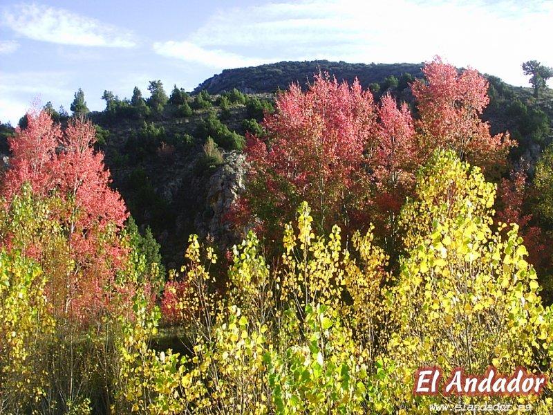 ALBARRACIN OTOÑAL