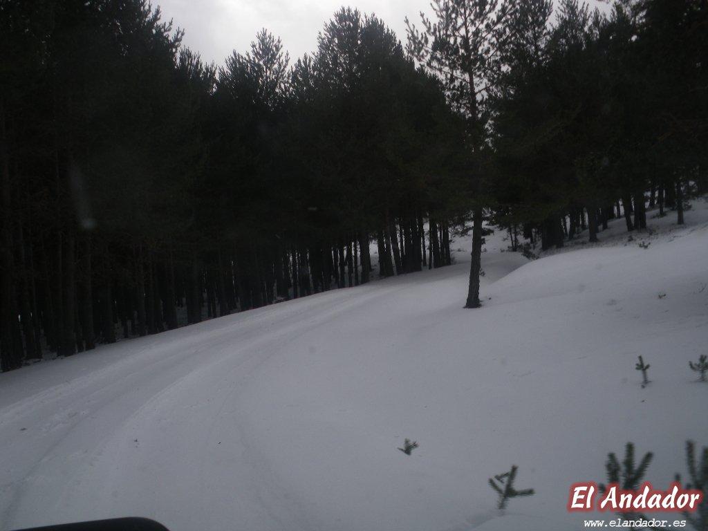 Nieve - ANDADOR VISITAS GUIADAS