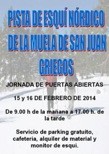 Pistas Griegos 15.02.2014