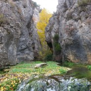 #FelizDomingo #1DeNoviembre #Regalos que te hace la #naturaleza y el #otoño. #Descubre #BarrancoHondo, el #mayor #cañón de la #SierraDeAlbarracín