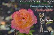 #FelizSanValentin en #Albarracin