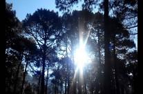 #FelizDomingo desde #SierraDeAlbarracin