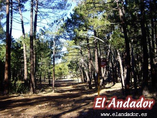 Albarracín-Pinturas Rupestres-Espacio Protegido Rodeno- Albarracín