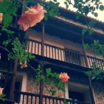 Primavera en Albarracín con Andador Visitas Guiadas