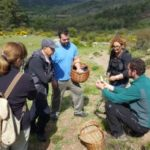 Albarracín Sierra de Albarracín Micología