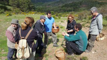 Sierra de Albarracín y Micología de la mano en primavera