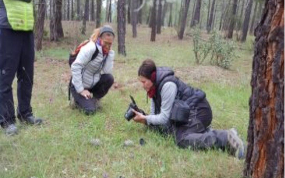 Noticia Diario de Teruel: Una docena de personas participan en la jornada sobre orquídeas en Terriente