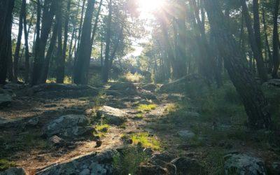 #CaminosASeguir #SierraDeAlbarracin
