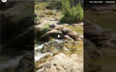 Ruideros de Calomarde: nuestros embajadores nos mandan este vídeo…GRACIAS!!