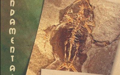 Noticia Eco de Teruel: Fósiles de Libros (Teruel) protagonizan otro relevante avance metodológico en Paleontología