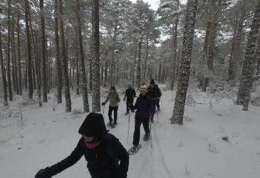 Noticia Diario de Teruel: Las pistas de esquí de fondo de Griegos abren este sábado la temporada