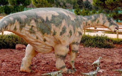 Noticia Eco de Teruel: Dos especies de grandes dinosaurios ornitópodos convivieron en Teruel durante el Cretácico Inferior