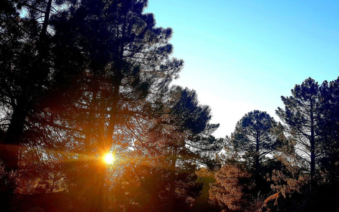 #BuenosDías desde #PinaresdelRodeno #Albarracín #SierraDeAlbarracín #CuandoElSolTeSaluda