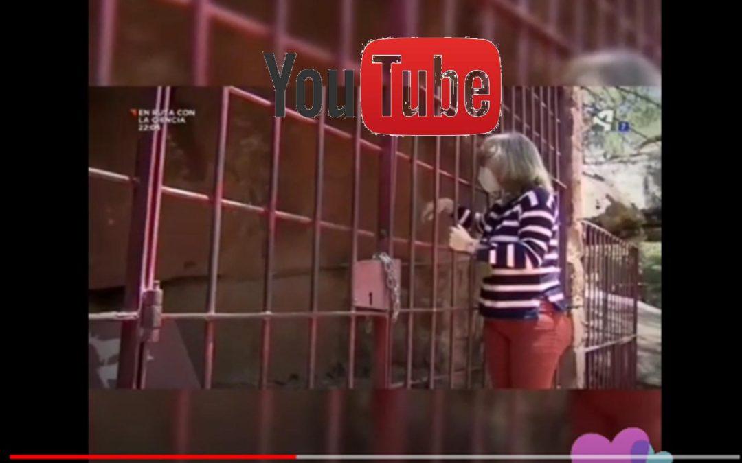 ANDADOR Visitas Guiadas con ARAGÓN TV en los Pinares del Rodeno de Albarracín y su Arte Rupestre Patrimonio de la Humanidad