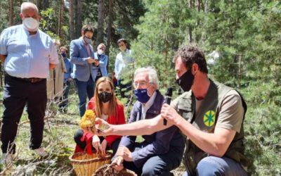 Noticia Diario de Teruel: Presentan en Tramacastilla la Asociación de Parques Micológicos de Aragón, órgano de referencia de los recursos micológicos en la Comunidad